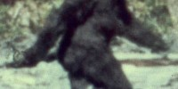 Oxford University Project To Look For DNA Proof Of Yeti
