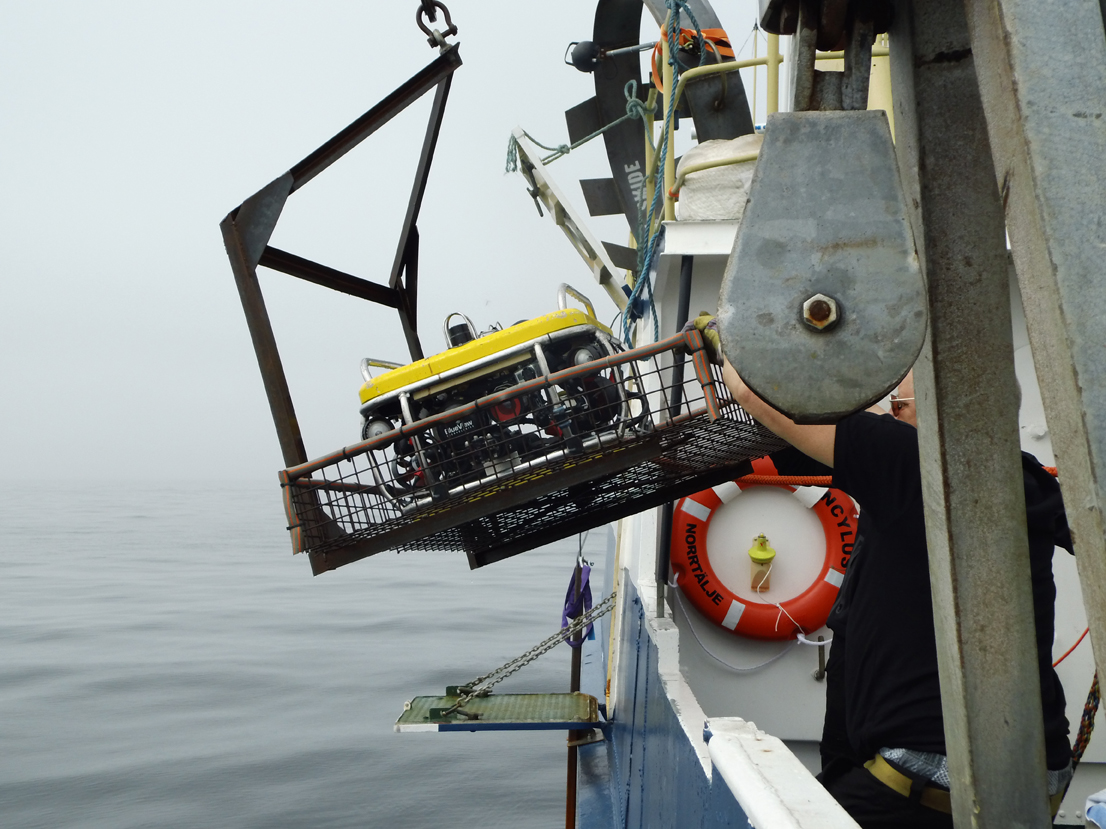 The Ocean Modules V8 Sii ROV being deployed last year to look at the anomaly.